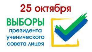 Выборы 24 октября